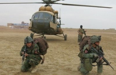 در چندین عملیات نظامی 186 تن دهشتافگن کشته شدهاند