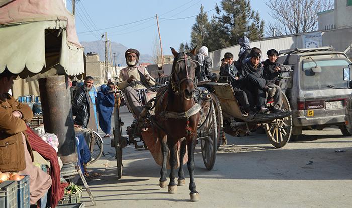 اسبگاریها هنوز در کابل مسافرکشی میکنند