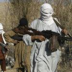 اعلام آتشبس یکجانبه با طالبان؛ مروری بر رویدادهای امنیتی هفتهی گذشته