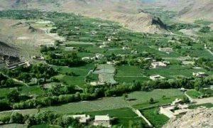 حملهی طالبان در کجران دایکندی؛ از کشته و زخمیشدن ۵۳ نیروی دولتی تا آوارهشدن ۱۸۰۰ خانواده