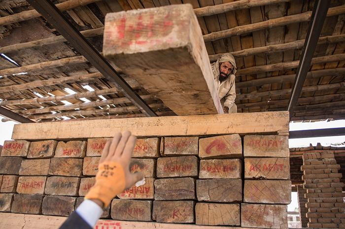 جنگل کنر؛ منبع درآمد جنگجویان داعش