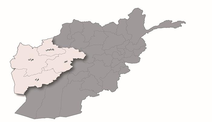 بررسی اوضاع امنیتی غرب کشور؛ از افزایش تحرکات طالبان تا تلفات سنگین این گروه