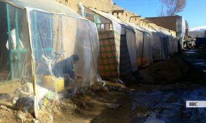 چرا دانشجویان دانشگاه بامیان اتاقهای نمناک را بر خوابگاه دولتی ترجیح میدهند؟