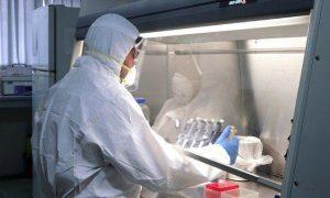 ویروس کرونا در افغانستان