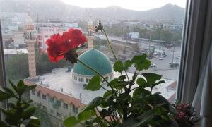 طالبان و وعدههای توخالی صلح