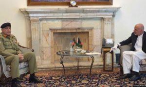 آیا پاکستان لانههای امن طالبان را برمیچیند؟