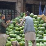 شیوع کرونا، مرزهای بسته، نبود سردخانه؛ بازار میوههای تازه افغانستان چگونه است؟