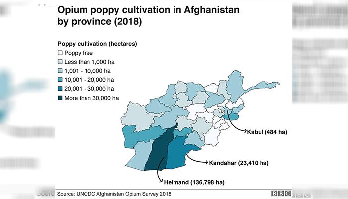 کشت خشخاش در افغانستان در سال 2018 نظر به ولایت و هکتار (منبع: بیبیسی/دفتر سازمان ملل برای مقابله با مواد مخدر و جرم)