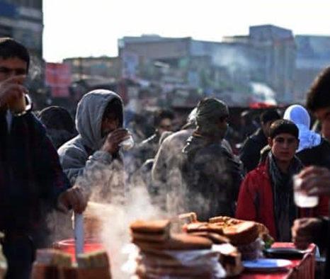 کنترل جمعیت؛ کلید ورود به جامعهی پایدار