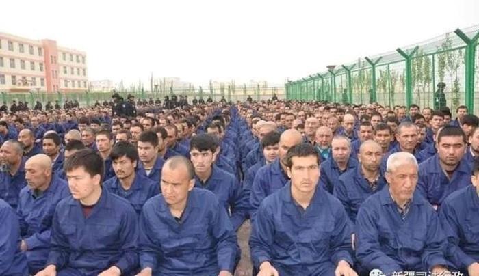 چین محدودیتهای شدیدی را برای اویغورها وضع کرده است و جنگجویان اویغور به هدف دفاع از مسلمانان اویغور تلاش میکنند.