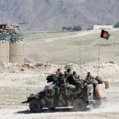 نیروهای دولتی در باغیس