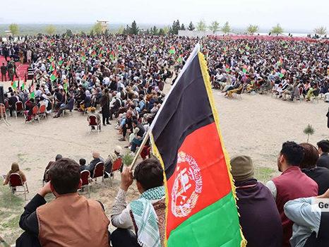 دولت موقت باعث نابودی افغانستان خواهد شد