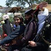 دلیل ترس مردم، نفرت از طالبان است