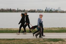 چگونه پیادهروی میتواند به نوسازی مغز کمک کند
