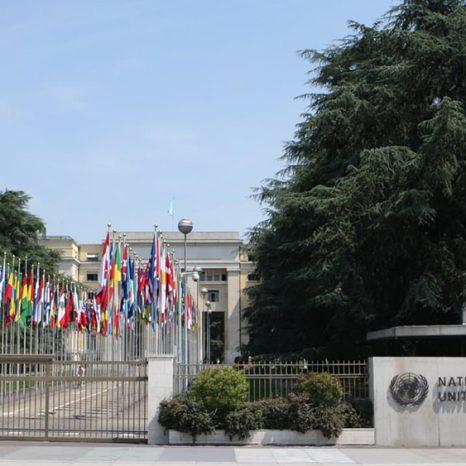 سازمان ملل متحد جینوا
